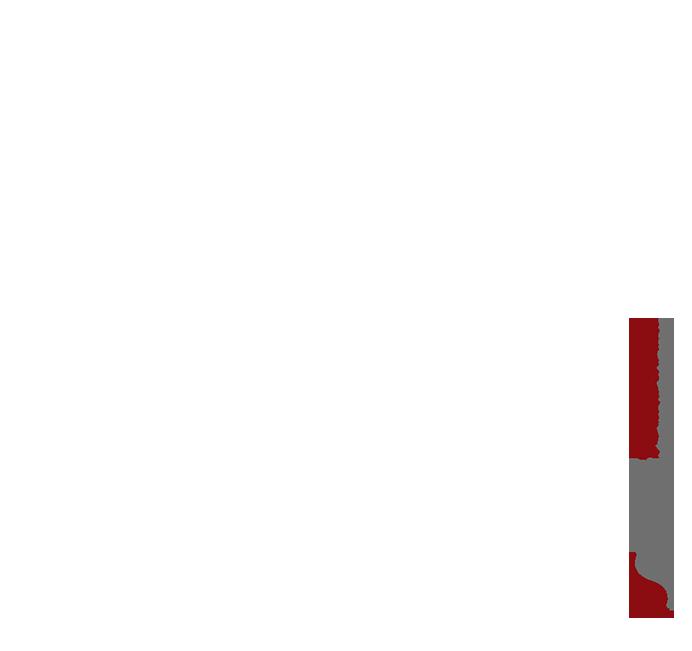 Logo1 Pure Prestige